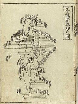 Tuine Massage oud Chinees leer boek
