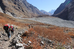 trekking langtang highlands