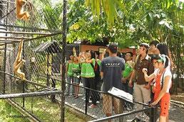 Explore the wildlife rescue station in Cu Chi