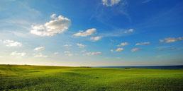 Linksgolf-Landschaft auf Praia D'El Rey