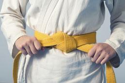 Ausbildung Six Sigma Yellow Belt