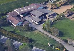 the best attitude clearance prices sale uk Waldhof - Obsthof Schneider | Waldhof