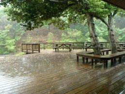 雨のデッキ