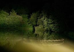 Foto: Annelie Röhm Flugbild einer Wasserfledermaus