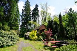 Foto: Annelie Röhm Garten in Nösperts-Weidmoos
