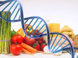 Dieta del DNA Genetica e Nutrigenomica