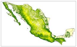 CURVAS DE NIVEL DE MÉXICO