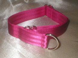 Halsband, Hund, Klickverschluss 2,5 cm breit, Gurtband schwarz, Borte Rottöne