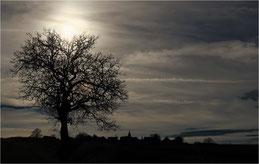 L'ombre du village