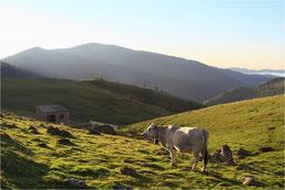Monts d'Ariège