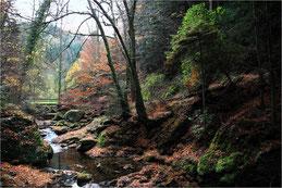 Vallée en Schwarzwald