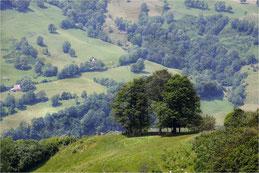 L'îlot. Terre d'Auvergne