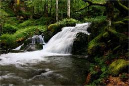 La cascade. Hautes-Pyrénées