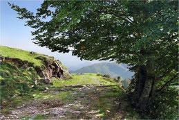 La montée en Ariège