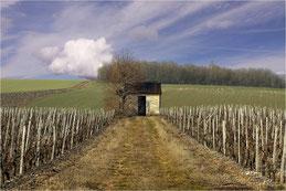 Cabane du vigneron