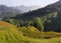 Vallons d'Auvergne