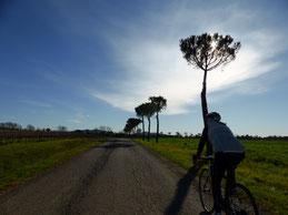 Fernblick in der Toskana, extra für Rennradfahrer