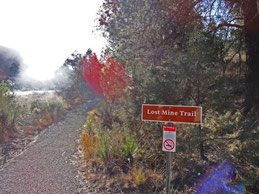 Start zur Lost Mine Trail Wanderung