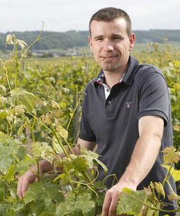 Gaëtan Bruneau, vigneron à Saint-Nicolas de Bourgueil
