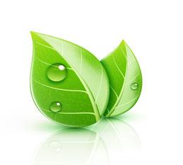 Connaître la quantité de chlorophylle dans les plantes - pince à cholorophylle Agralis - Agen