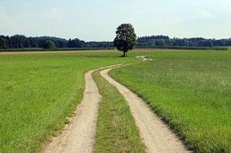 Symbolfoto (Bild: Antranias, pixabay.com).