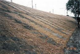 Erd- und Wegebau: Böschungsprofilierung, Böschungsbefestigung