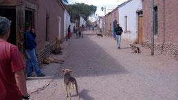 San Perdo de Atacama