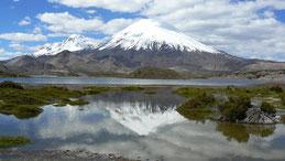 Parinacota and Pomerape volcanos, Lago Chungara, Lauca NP