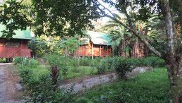 Bonanza Lodge, Reserva Ecologica Bonanza, Manu National Park