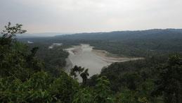 Alto Madre De Dios, Manu National Park