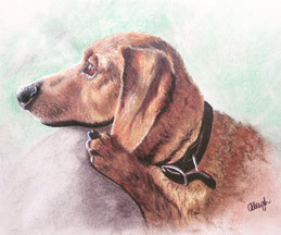 cute puppy drawing in color pastel