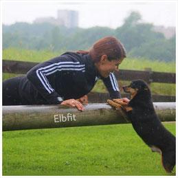 Elbfit, Blog, Ernährung, Fitness, Hunde, Beauty, Baby