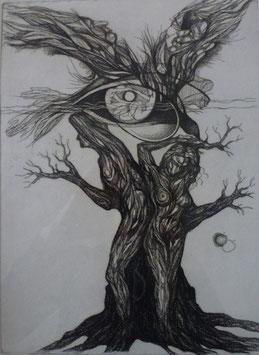 Bild Lebensbaum