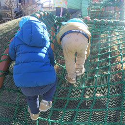 上まで登りきるぞ!