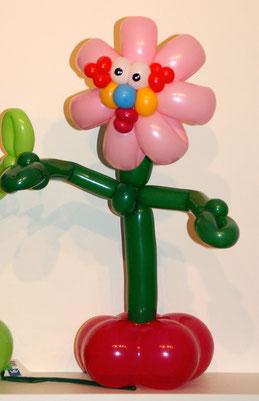 Mr.Balloni.ch,Deko,  Geburtstag, Überraschung, Tischdekoration,Firma, Betrieb, Feier, Jubiläum, Ballonblumen