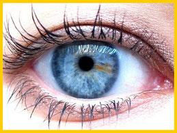 Imagen ojo Iridología Herbolario Alquimista Arrecife Lanzarote