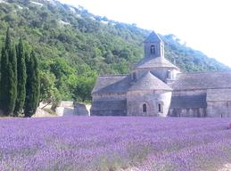 Chambre d'hôtes Senanque Luberon Provence