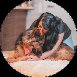 Hundemassage Manuela Koll