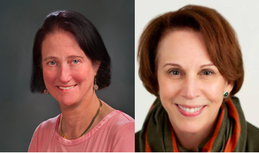 County Board Candidates (above - left to right): Audrey Clement, Libby Garvey