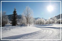 Langlauf Langlaufloipe Schnee Sonne Radstadt Wiesenrain Obertauern