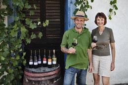winesofa, borospalackok