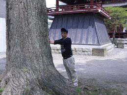 板橋不動尊神木での採気
