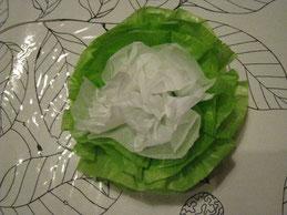 生徒さんがくれた花紙。キャベツみたいでかわいい。