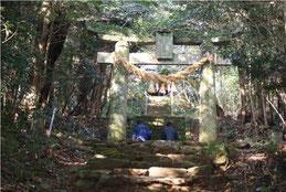 山祇神社へと続く参道