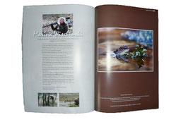 Mein Portfolio in der Zeitschrift Naturblick, Ausgabe 4-2010