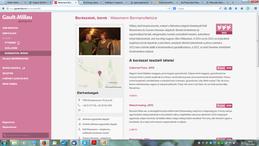 gomijo weboldal