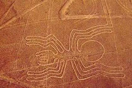 Nazca Linien Peru, Paititi Tours, Harald Petrul