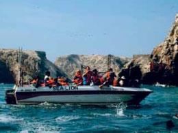 Paracas Ica Nasca Ballestas Inseln Humboldtpinguine Huacachina Oase Nascalinien Nazcalineien Paititi-Tours