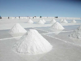 Bolivien La Paz Sucre Potosi Uyuni Salzebene Fischinsel Anden