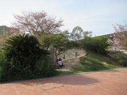 右手が呉市総合体育館 この日は子どもたちが詩碑(文学碑)の周辺で勉強をしていた。